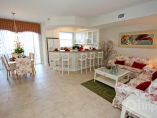 519 Little Harbor - Apollo Beach vacation rentals