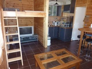 Nice Condo with Private Fishing and Television - Pra Loup vacation rentals