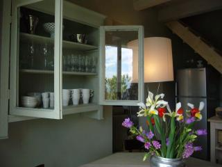 Charming 2 bedroom Cottage in Fivizzano - Fivizzano vacation rentals