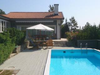 Villa Herrvik with swimmingpool near Stockholm - Stockholm vacation rentals