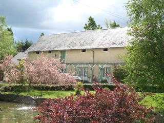Le Heron 1 - Loches vacation rentals
