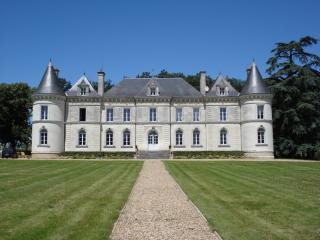 Perfect Chateau with Television and Microwave - Lencloitre vacation rentals