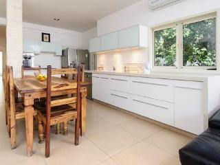 Spectacular & Spacious 4 BR Apt Next to Bazel Sq - Tel Aviv vacation rentals