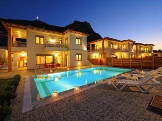 Danai Villas, Heraklion Crete - Hersonissos vacation rentals
