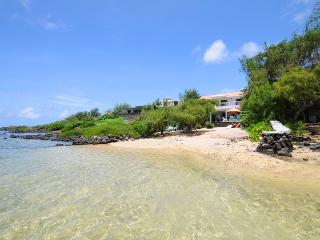 Villa Tropicale - Poste Lafayette vacation rentals