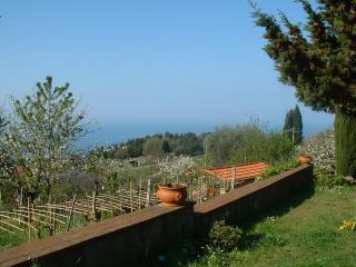 Villa con giardino vista mare/Cottage with garden - Marina di Carrara vacation rentals
