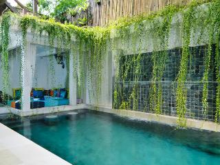 3 bedroom, Seminyak, Villa beji - Seminyak vacation rentals