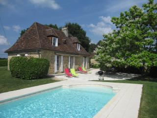 Lovely Cottage with Internet Access and Swing Set - Rouffignac-Saint-Cernin-de-Reilhac vacation rentals