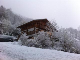 Alpine Action Adventures - Haute-Savoie vacation rentals