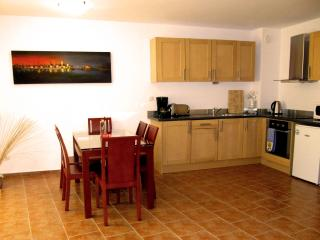 Perfect 3 bedroom Penthouse in Bansko - Bansko vacation rentals