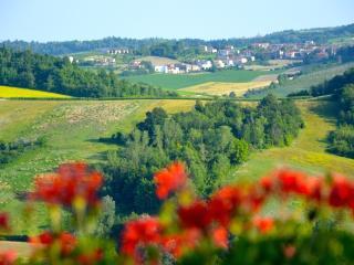 1 bedroom Bed and Breakfast with Internet Access in Casale Monferrato - Casale Monferrato vacation rentals