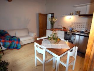 Bright 2 bedroom Vacation Rental in Rufina - Rufina vacation rentals