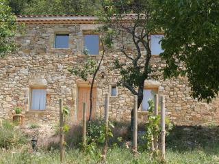 Maison de Charme La Cascade 110m2 - Teyssieres vacation rentals