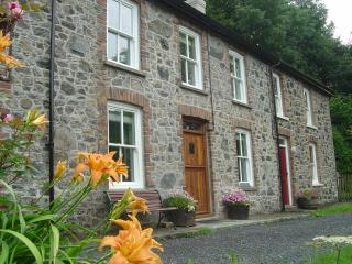 Comfortable 3 bedroom Llanwrtyd Wells Cottage with Internet Access - Llanwrtyd Wells vacation rentals