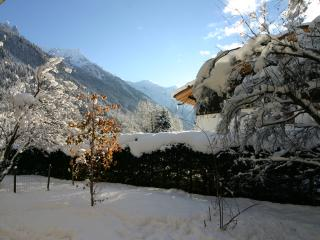 Wonderful 2 bedroom Vacation Rental in Chamonix - Chamonix vacation rentals