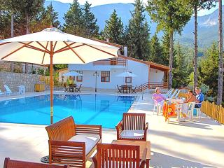 Holiday Villa  Beycik pool sea forest view Turkey. - Beycik vacation rentals