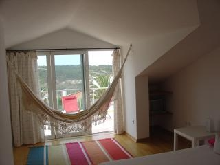 Beautiful House with Television and Microwave - Zambujeira do Mar vacation rentals