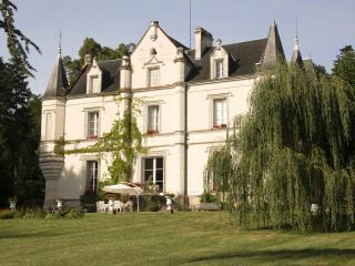 Charming Chateau to Relax in Style and Space - Saint-Jean-Saint-Germain vacation rentals