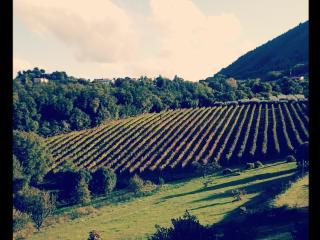 Villa Marani appartamento Rocca Pendice - Teolo vacation rentals
