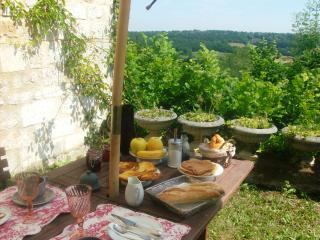 7 bedroom Chateau with Internet Access in Angouleme - Angouleme vacation rentals