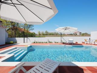 Apartment Sime with heated pool - Privlaka vacation rentals