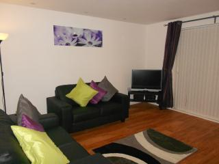 Nice Condo with Internet Access and Dishwasher - Llanelli vacation rentals