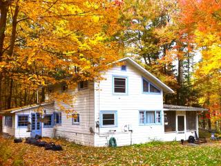 • Artists & Writers Catskills Cottage • Woodstock - Clermont vacation rentals