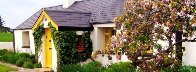 Perfect 2 bedroom Cottage in Sligo - Sligo vacation rentals