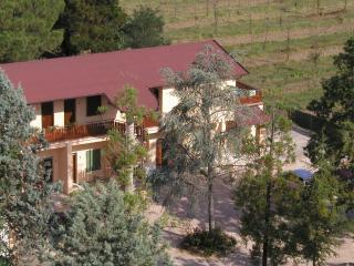 Massimo Giua - Castiglione Del Lago vacation rentals