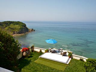 SEAHORSE BEACH VILLA - pool & steps down to sea - Argyrades vacation rentals