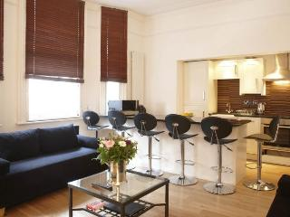Stylish 2 bedroom apartment with wi-fi in Holborn - London vacation rentals