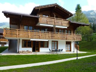 Cozy 3 bedroom Apartment in Les Diablerets - Les Diablerets vacation rentals