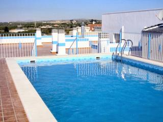 Comfortable 2 bedroom Apartment in Los Montesinos - Los Montesinos vacation rentals