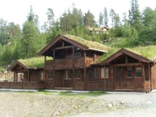 Highend mountain cabin. 30 % discount on currency - Uvdal vacation rentals