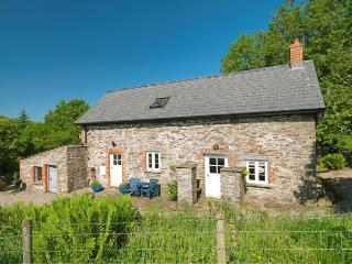 Cottage in the woods Cefn Y Waun - Velindre vacation rentals