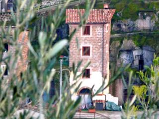 StoneTower Ancient Charming Quiet 1h from Rome - Vignanello vacation rentals