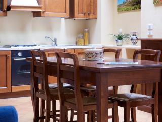 "Apartment ""Foriporta"" in Siena - Siena vacation rentals"