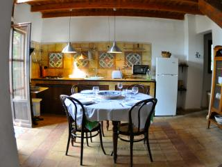 Beautiful Farmhouse Barn with A/C and Long Term Rentals Allowed (over 1 Month) in Cinisi - Cinisi vacation rentals