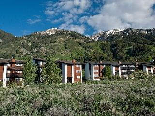 Ideal basecamp for your Teton Village adventures year-round - Teton Village vacation rentals
