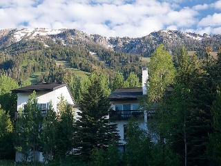 Ski Slope Sanctuary at Jackson Hole! Best price for prime location NEAR TRAM - Teton Village vacation rentals