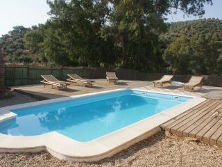 The Olive Mill - Experience Alpacas in Rural Spain - Montoro vacation rentals