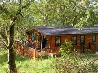 Beautiful Cabin with Internet Access and Satellite Or Cable TV - Balquhidder vacation rentals