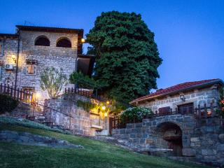 Villa Prodan - Buzet vacation rentals