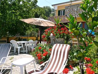 Villa Alberto. Apt Nocino - Castellabate vacation rentals
