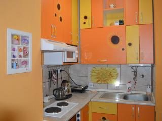 Apartment Valencia inPozarevac - Pozarevac vacation rentals