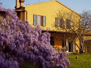 Charming 2 bedroom Farmhouse Barn in Castagneto Carducci - Castagneto Carducci vacation rentals
