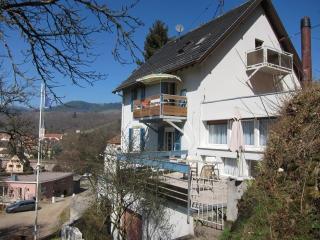 Maison Bellevue magnificient views, wifi, parking - Munster vacation rentals