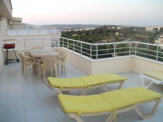 Beautiful 3 bedroom Mavisehir Condo with Internet Access - Mavisehir vacation rentals