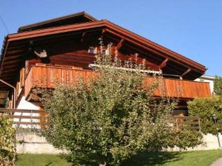 Nice Villa with Internet Access and DVD Player - Grindelwald vacation rentals