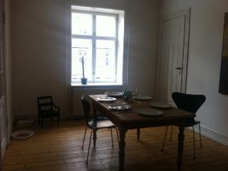 Nice Copenhagen apartment in quiet neighborhood - Copenhagen vacation rentals